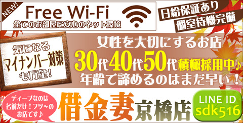 Wi-Fi960486