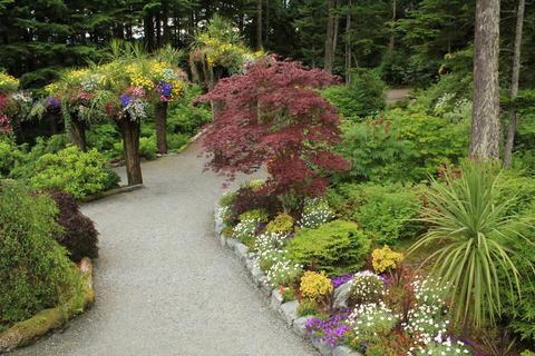 Cây lộn ngược, những chậu hoa tự nhiên trong khu vườn treo Alaska - Glacier Gardens