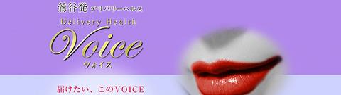VOICE640x180