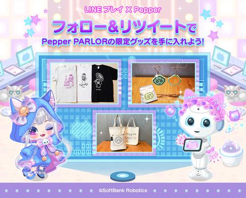 20201021_Pepper_OA_yonekura