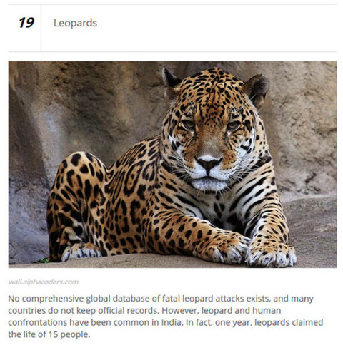 animals_who_are_known_for_causing_human_deaths_640_07