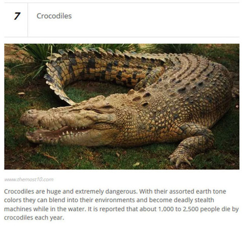 animals_who_are_known_for_causing_human_deaths_640_19