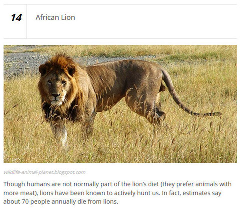 animals_who_are_known_for_causing_human_deaths_640_12