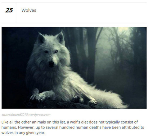 animals_who_are_known_for_causing_human_deaths_640_01