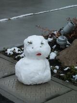 雪だるま1