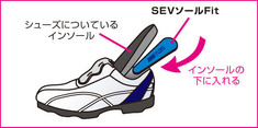 np-ssf2
