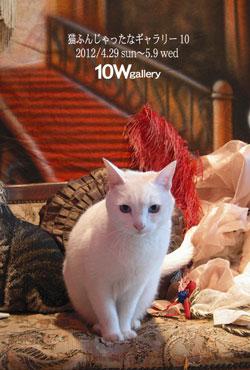 猫ふんじゃったなギャラリーたち 10