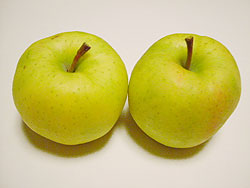 りんご 「星の金貨」