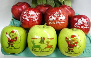 クリスマス用 絵入り津軽りんご