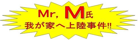 Mr M氏