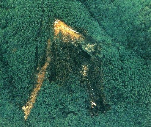 【闇深】日航123便墜落事故、自衛隊のミサイルが原因ってマジ?