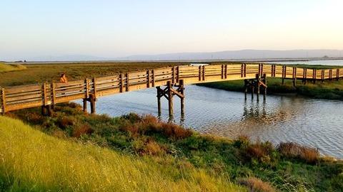 the-small-bridge