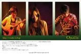 フライヤー2009-01