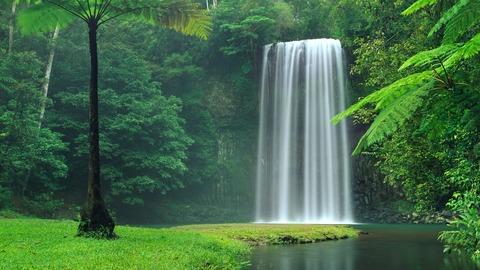 millaa_millaa_falls_in_australia_4k-1280x720