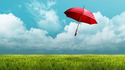 umbrella_fields-1280x720
