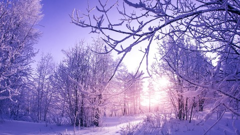 snow_covered_winter_trees-1280x720