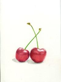 2011_06_02_cherry_05