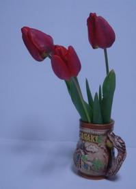 tulip0519-2