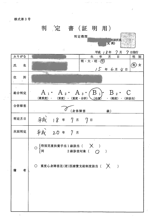 的 分析 検査 乳幼児 発達 式 円城寺