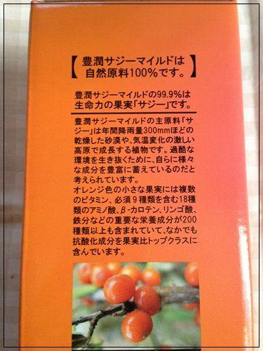 blog-saji (3)