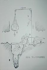 55bab005.jpg