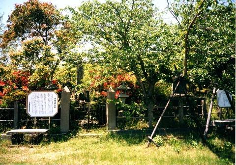 199605_photo253 (2)