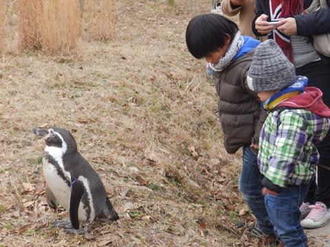 埼玉県こども動物自然公園4