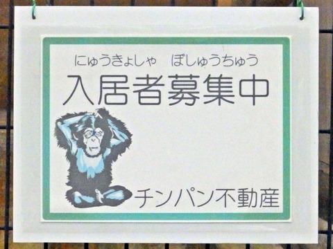 日本平264