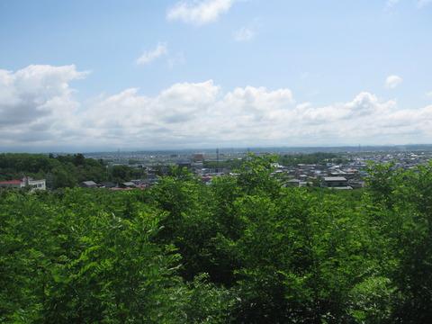 大森山手前の丘から