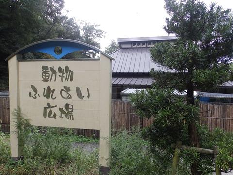 岡崎東55