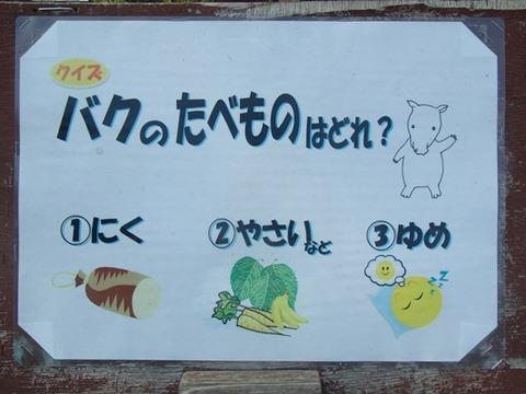 金沢動05