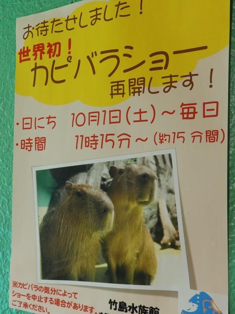 竹島水13