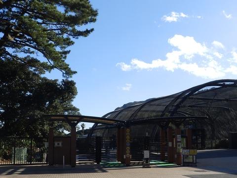 大島公園1