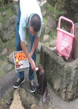 千葉市動物園1_R