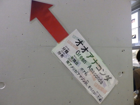 日本平189