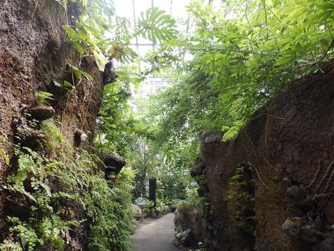 生物園098