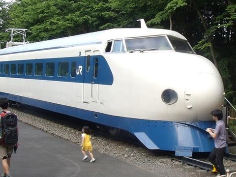 青梅鉄05