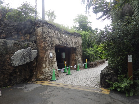 上野動物園1223_2