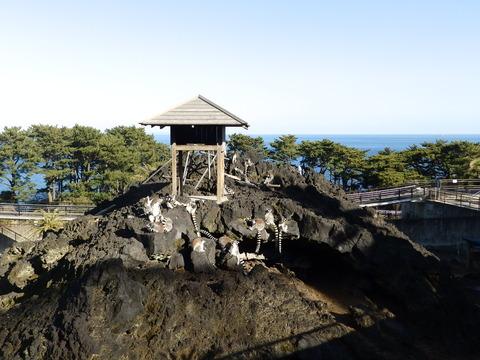 大島公園3