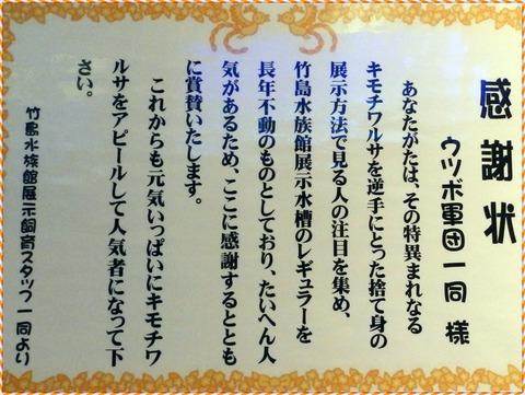 竹島水91
