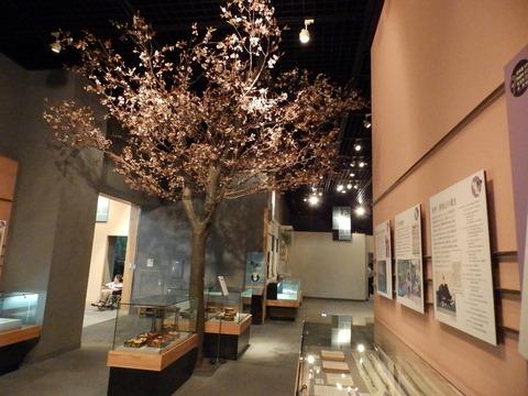 北区博物館1446-03