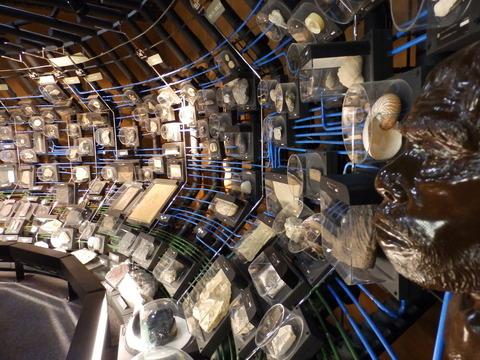 地質標本館9