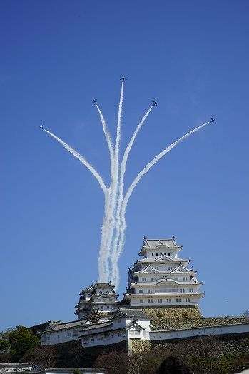 Blue Impulse (1)