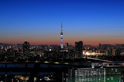 東京スカイツリー夜景「白色」
