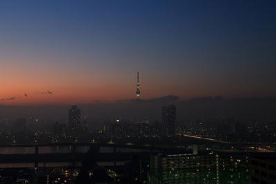 上だけ見えた東京スカイツリー夜景