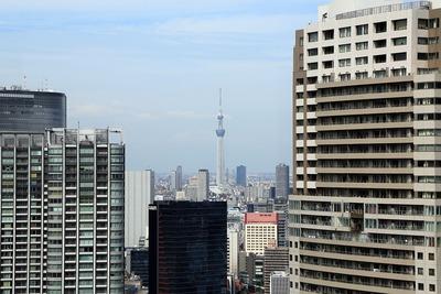 世界貿易センターから見た東京スカイツリー