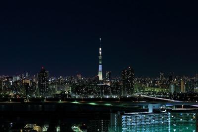 東京スカイツリー明花のゆり
