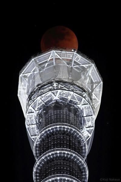 東京スカイツリーと皆既月食