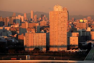 首都高の影