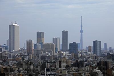 池袋の超高層ビル群と東京スカイツリー